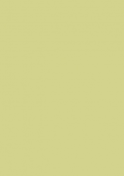 Fond Papier #13 Tropical Green 1,35 x11m