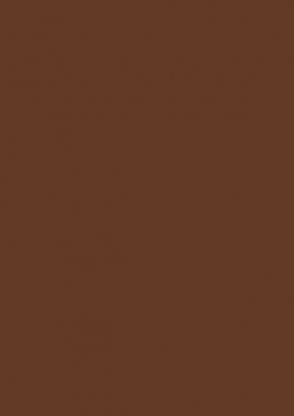 Fond Papier #20 Peat Brown 2,72 x 11m