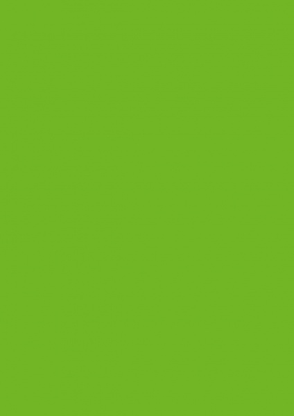 Fond Papier #31 Apple Green 2,72 x 11m